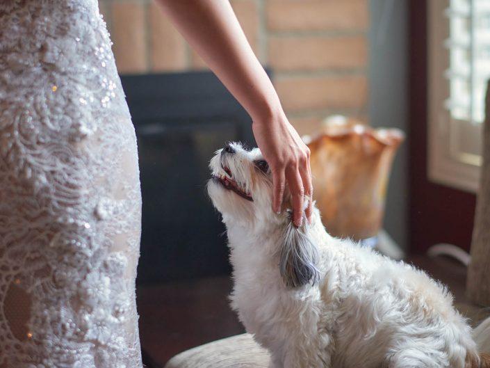 Bride's Bond